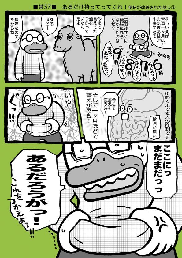 f:id:sukoyakagamo:20180612195804j:plain