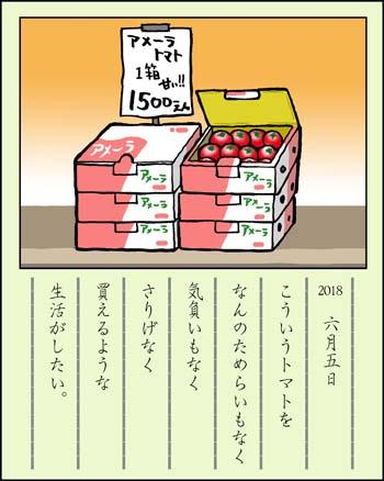 f:id:sukoyakagamo:20180630191557j:plain