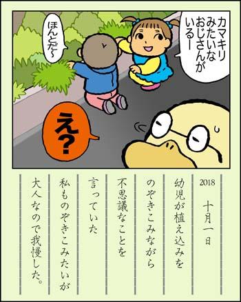 f:id:sukoyakagamo:20181031195204j:plain