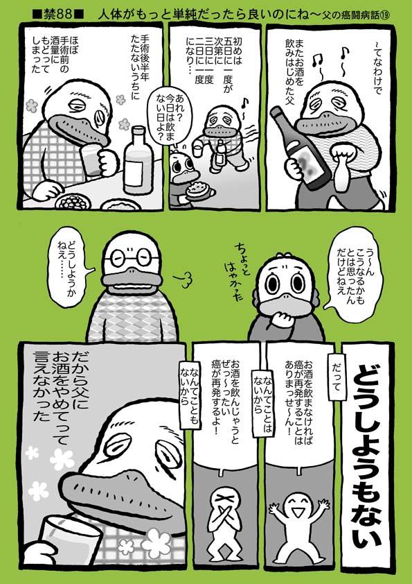 f:id:sukoyakagamo:20181128063932j:plain