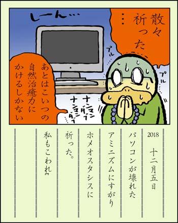 f:id:sukoyakagamo:20181231202157j:plain