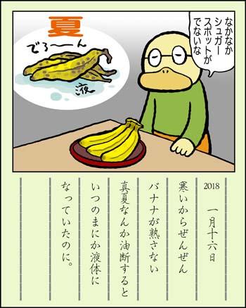 f:id:sukoyakagamo:20181231203834j:plain