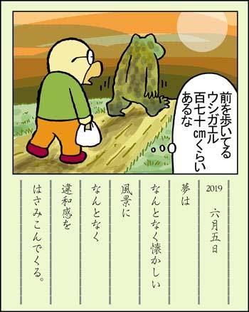 f:id:sukoyakagamo:20190630205331j:plain