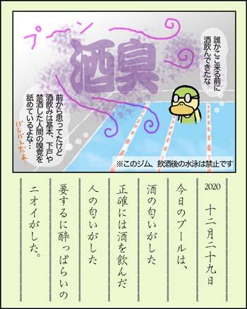 f:id:sukoyakagamo:20201231211520j:plain