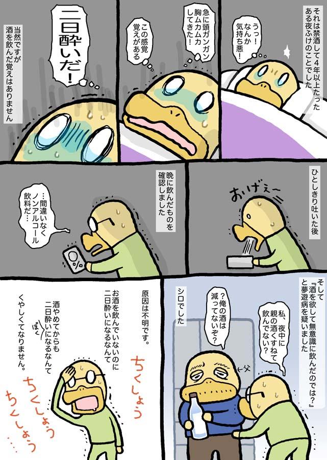 f:id:sukoyakagamo:20210209202951j:plain