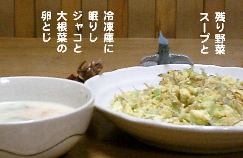 f:id:sukoyakagamo:20210228201805j:plain