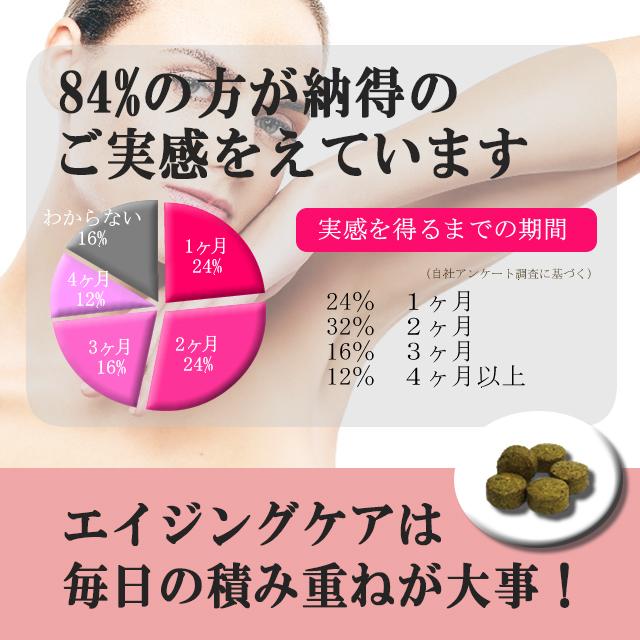 f:id:sukoyka-kanpo:20170217153851j:plain