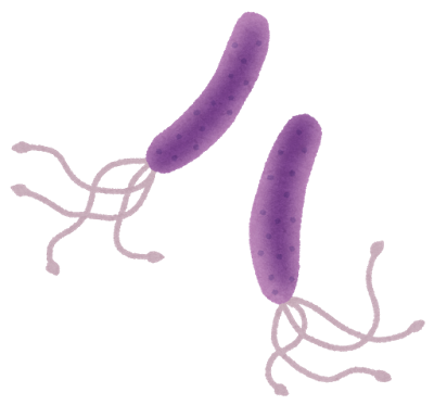 f:id:sulphoraphane:20170105150025p:plain