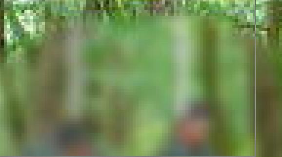 f:id:sumaapu0:20200108155254p:plain