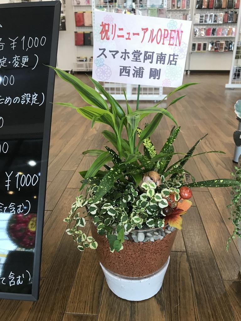 f:id:sumahodoukamojimaten:20180908143654j:plain