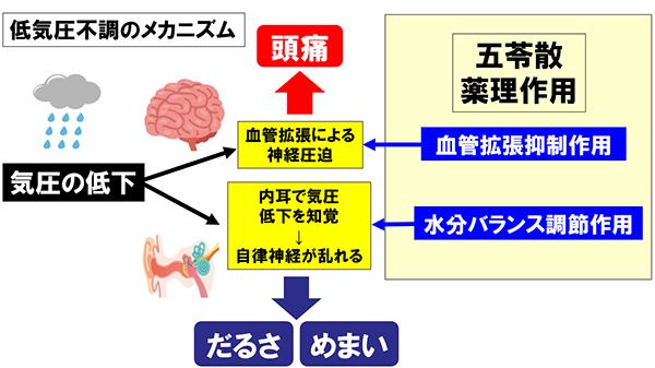 f:id:sumebamiyaco:20200819035835j:plain