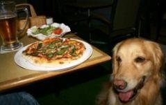 2006.9.4ピザとアポロ