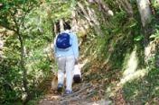 2006.12.2養老渓谷の山道