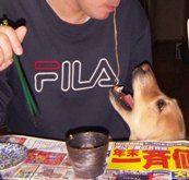 2006.12.4お蕎麦でラブラブ1