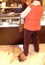 2007.3.20バルセロナのデパート