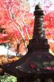 2008.12.3本土寺1