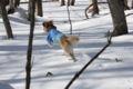 2009.2.7エーデルワイススキーリゾート3