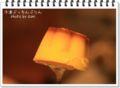 2010.3.19冷凍ぷっちんプリン1