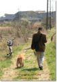 2010.3.20ロング散歩5
