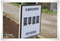 2010.3.27薬草農園