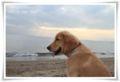 2010.9.29海岸で