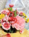 2010.11.09お花1
