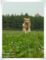 2011.6.19CX5-連写2