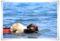 2011.9.10本栖湖3