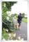 2012.7.8お散歩1
