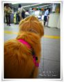 2012.7.19駅で待つ1