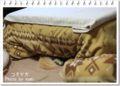 2012.11.22コタツ犬3