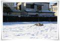 2013.1.15雪の翌日2