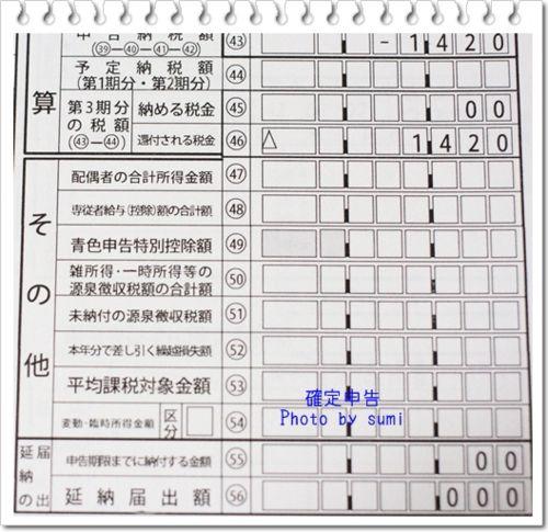 2013.3.8確定申告1