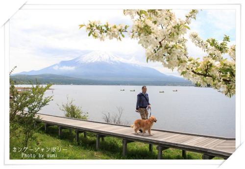2013.5.20富士山