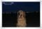 2013.5.25海岸でストロボ撮影4