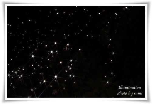 2013.10.29有楽町Illumination3
