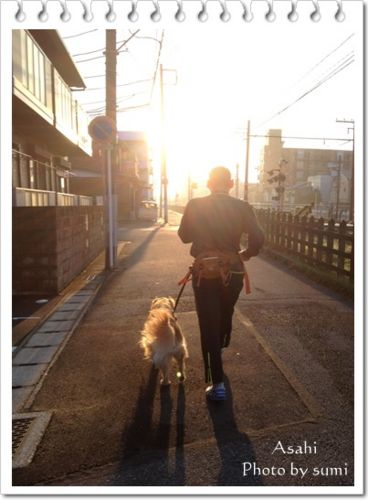 2013.10.30朝日3