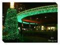 2013.12.11有楽町2