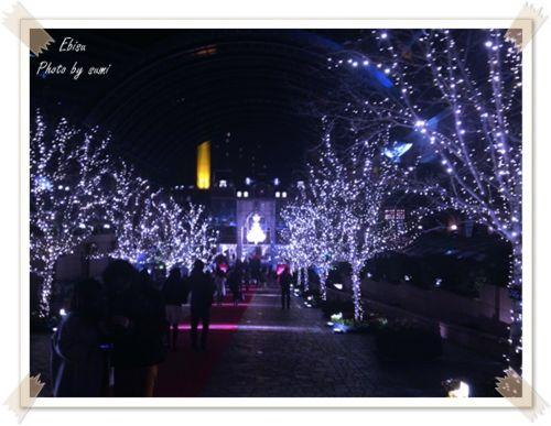 2013.12.17佐野元春1