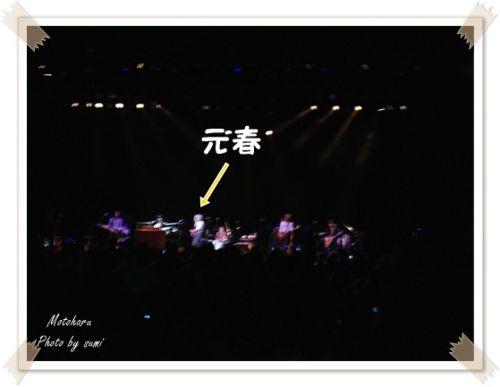 2013.12.17佐野元春4