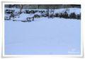 2014.02.09雪1