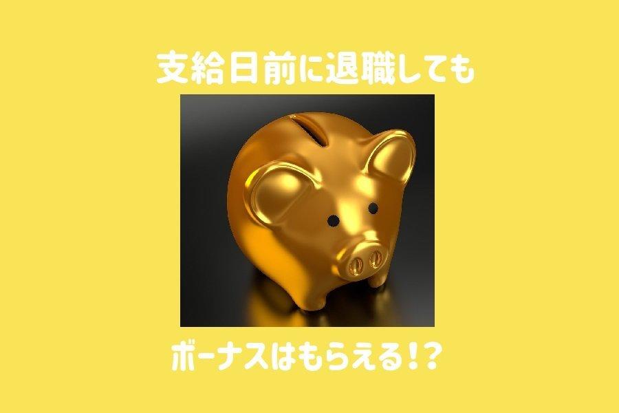 f:id:sumi10sumi10:20191203204819j:plain
