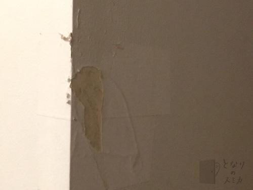 剥がされた壁紙