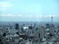 東京スカイツリー(都庁南展望室より)