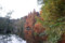 石神井公園三宝寺池