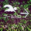 石神井プール