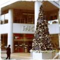 クリスマスツリー@仙台PARCO