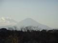 本日の富士山。鎌倉某所にて。