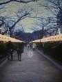 正月の鎌倉・段葛(2014/1/5夕刻 PEN-D撮影写真をスキャン)