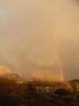 虹の先には何がある?